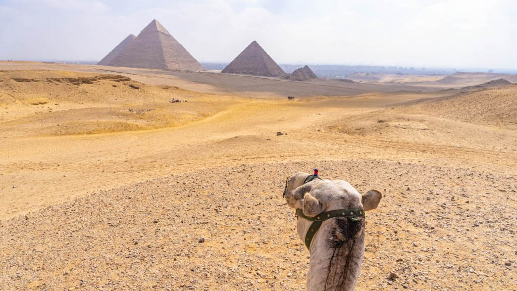 (Nederlands) Rondreis in Egypte: verschillende routes + VIDEO