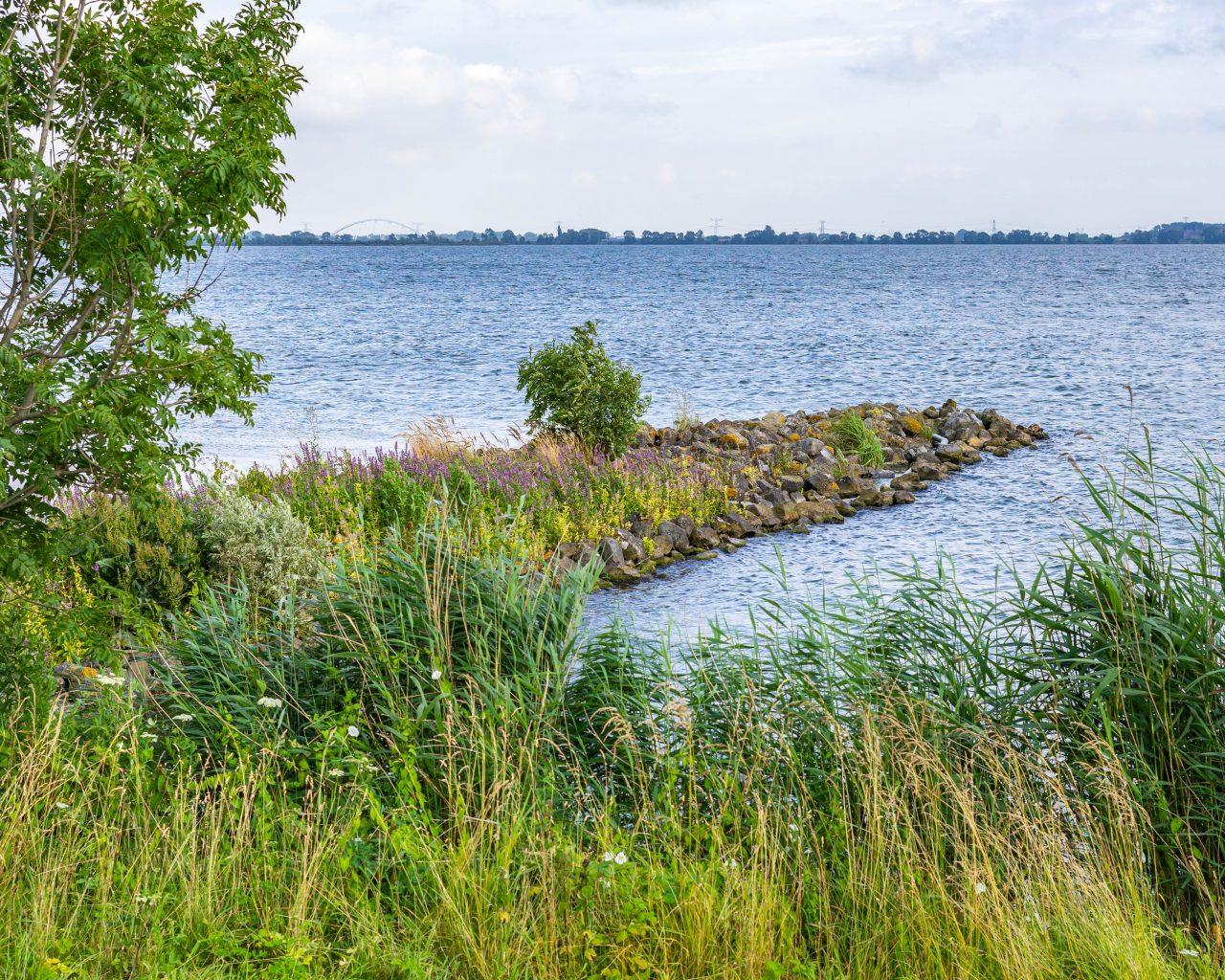 Pampus-forteiland-kamperen-water