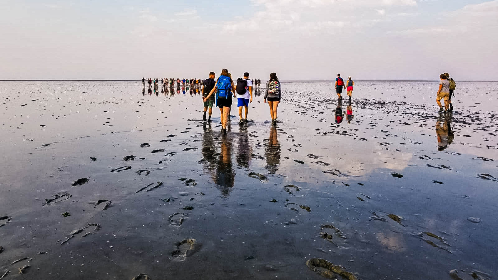 Wadlopen-tips-Waddenzee
