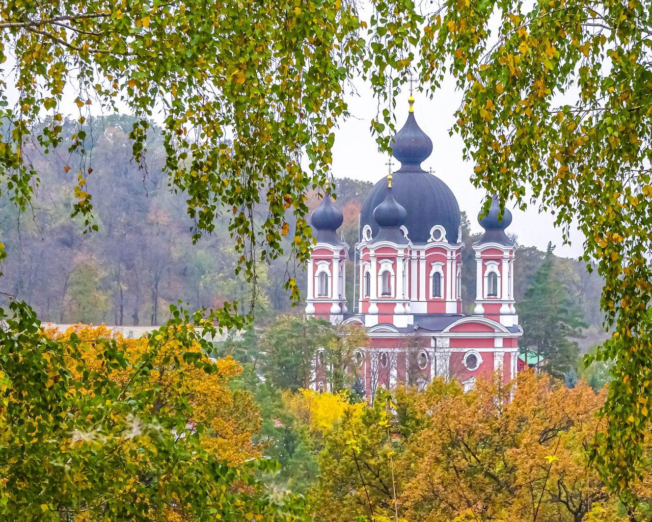 Uitzicht-op-Curchi-klooster-vanaf-bos