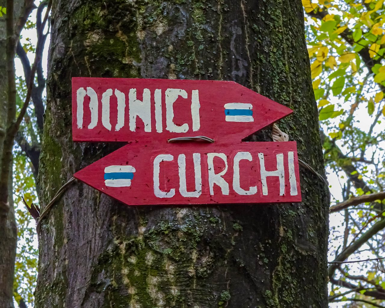 Routeborden-Curchi-Donici-in-bos