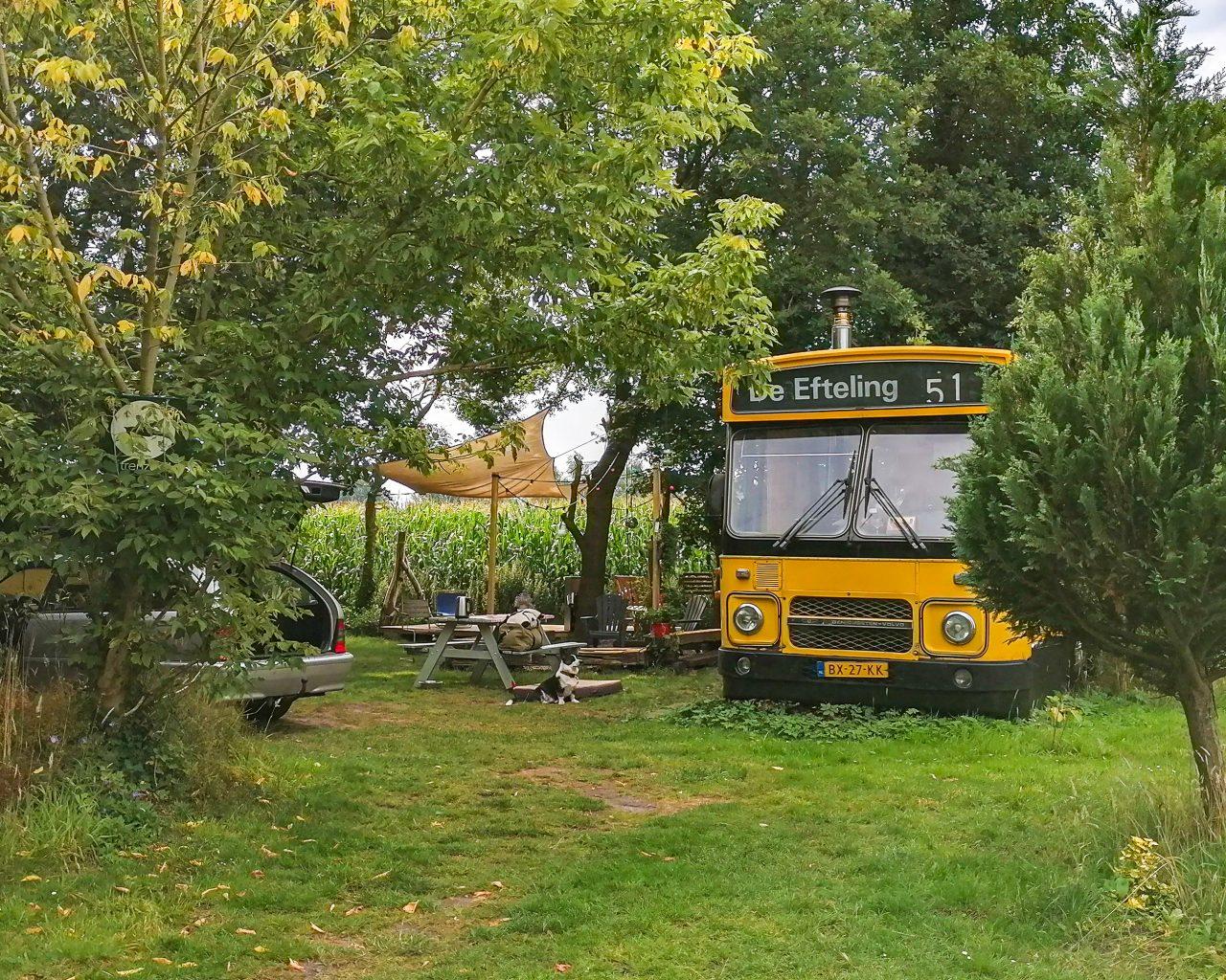 Gele-bus-als-bijzondere-accommodatie-op-camping