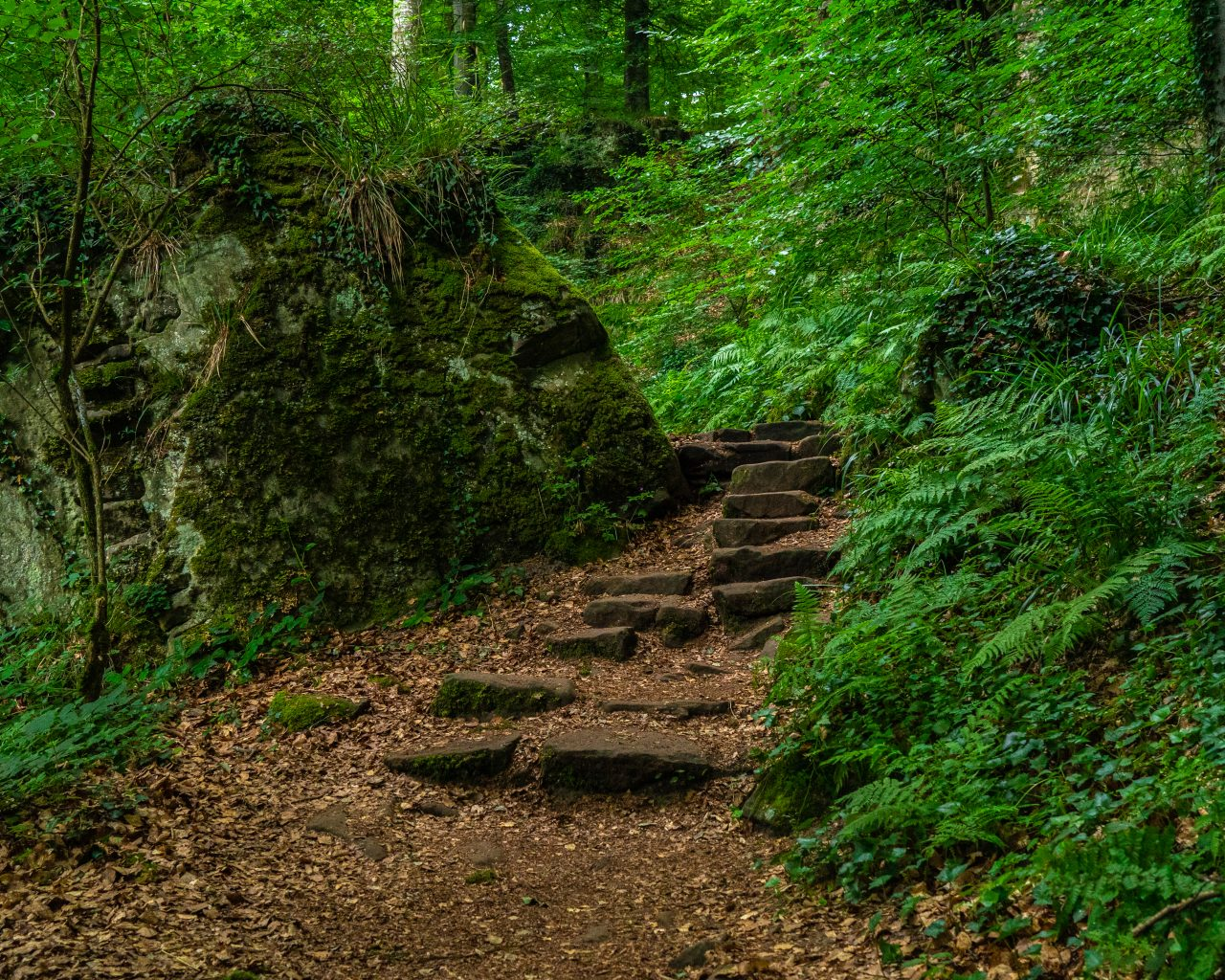Onverharde-wandelroute-Mullerthal-Trail-route-2