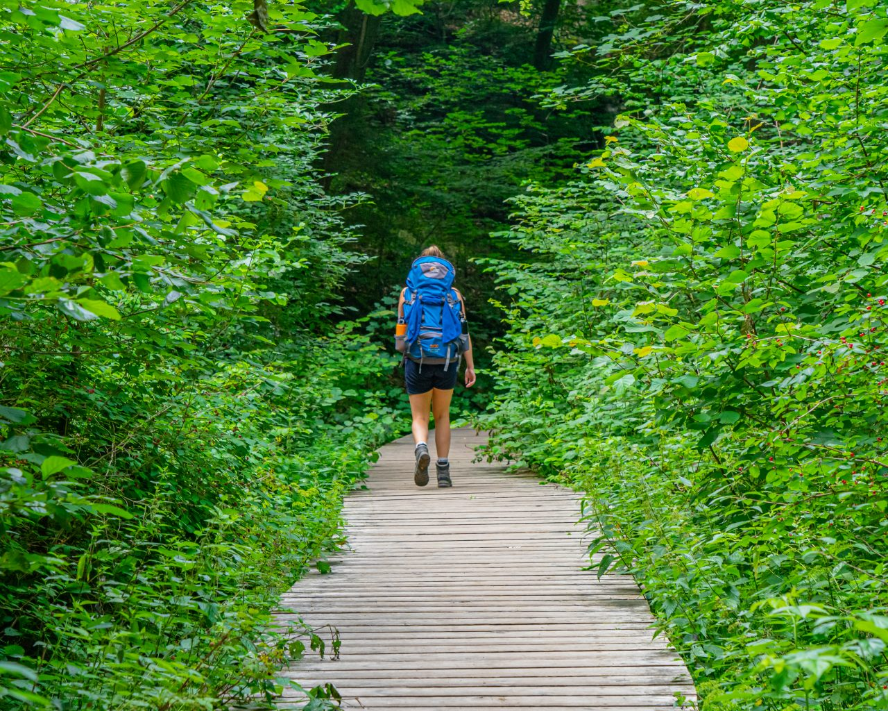 Vlonderpad-Mullerthal-Trail-route-3
