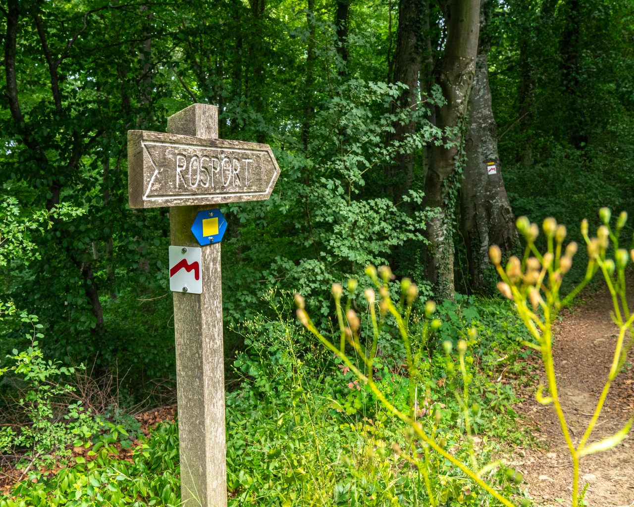 Mullerthal-trail-1-bord-met-markering