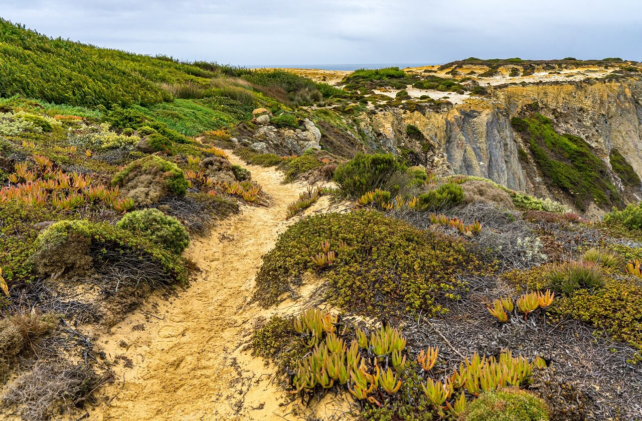 wandelpad-fishermans-trail-portugal